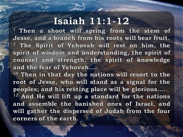 the-kingdom-of-god-isaiah-11-1-12